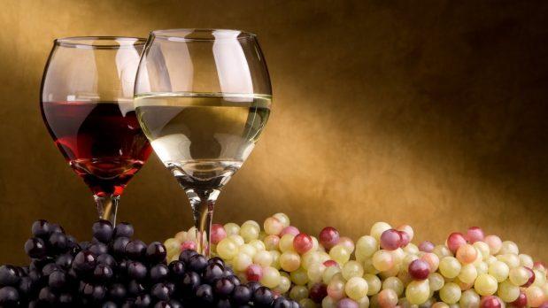 Le millésime 2015 : découvrez une excellente année pour le vin